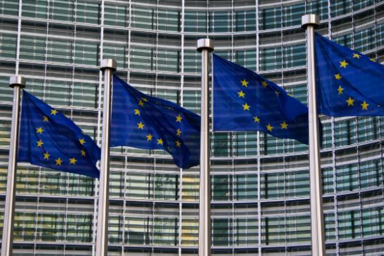 Gospodarske razmere v EU-28 v 2019 ugodne