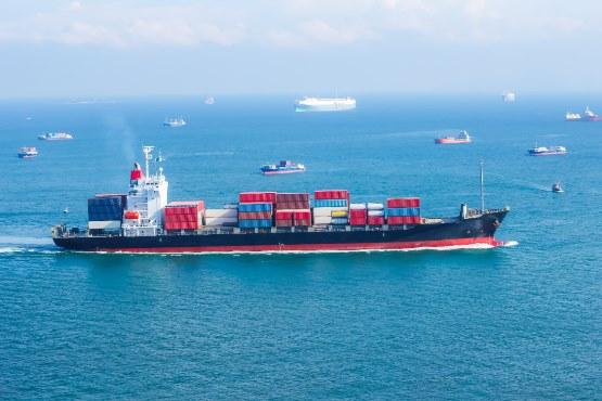 Exports and imports in August 2019 higher than in August 2018