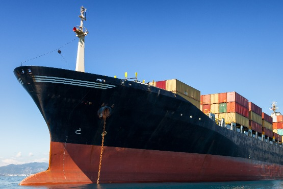 In November 2020, import prices 0.5% higher at the monthly level and 3.6% lower at the annual level