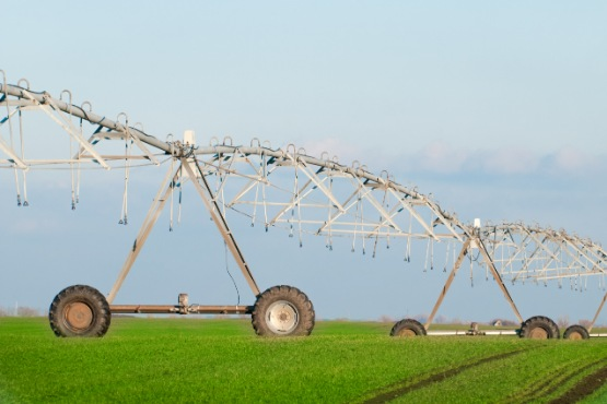 In 2019, 4% more water used for irrigation than in the previous year