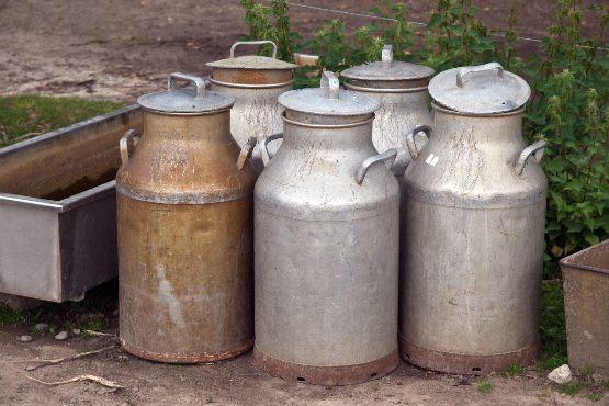 Prebivalec Slovenije porabi v gospodinjstvu povprečno 43 litrov mleka