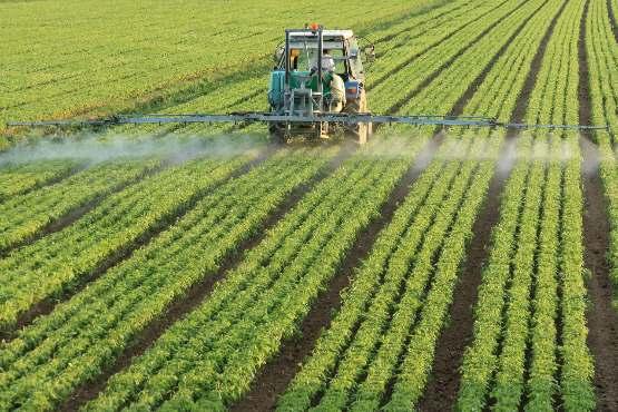 Cene inputov v kmetijstvu v juniju 2019 nižje na mesečni ravni, na četrtletni ravni pa višje