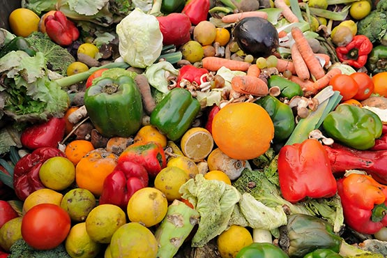 A resident of Slovenia discarded on average 64 kg of food in 2017