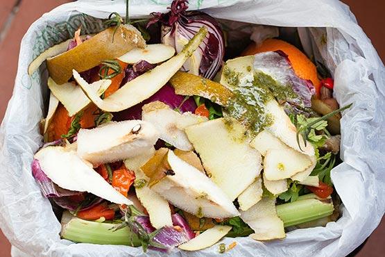 Prebivalec Slovenije je v 2019 zavrgel povprečno 67 kg hrane