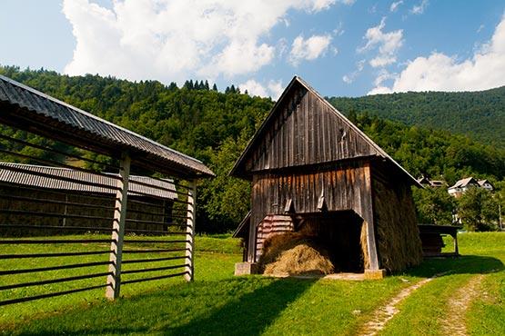 Kmetijski pridelavi je bila v 2020 namenjena skoraj četrtina površine Slovenije