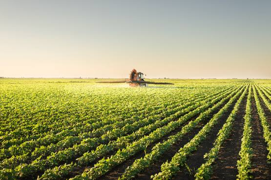 In 2018 the real factor income per AWU in agriculture expected to increase by 24% over 2017
