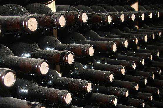 Od trsa do vina