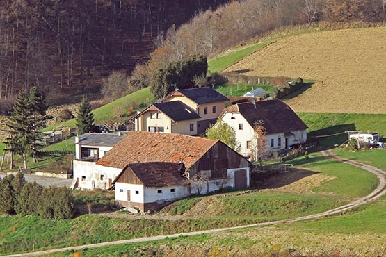 In 2016 there were 69,902 agricultural holdings in Slovenia; 3.4% less than in 2013