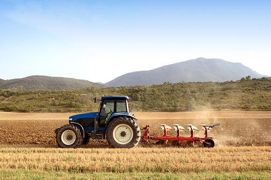 Cene inputov v kmetijstvu v  juniju 2018 za 0,7 % višje kot v maju 2018