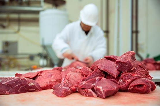 V slovenskih klavnicah pridobili v juniju 2017 manj mesa kot v prejšnjem mesecu