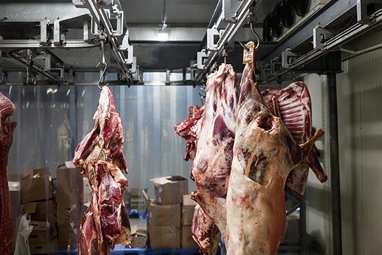 V slovenskih klavnicah pridobili v februarju 2017 manj mesa kot v prejšnjem mesecu