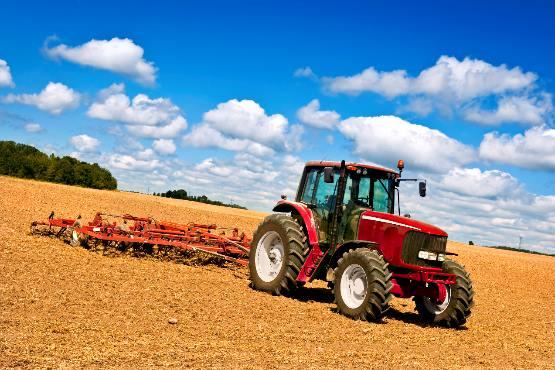 Vrednost odkupa kmetijskih pridelkov v maju 2018 za več kot 1 % nižja kot v maju 2017