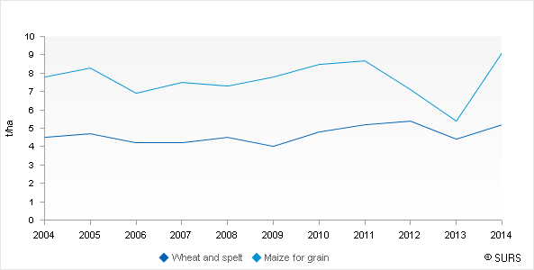 Chart 1: Yield wheat and spelt and maize of grains, Sloveniaja, 2004-2014