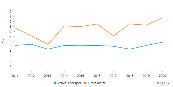 Yield of wheat and spelt and grain maize and corn-cob mix, Slovenia <sup> 1)</sup>